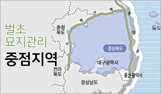 묘지관리 벌초 중심지역